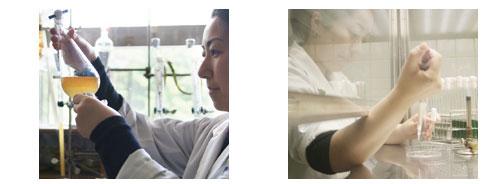 陶陶酒のイチョウ&DHAは国民生活センター発表の基準をクリアした安全品質です。