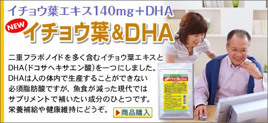 イチョウ葉エキス140mg+DHA イチョウ葉&DHA