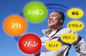 スッポン・マカ・マムシの他にも亜鉛、ビタミンE、アルギニン、ガラナなどバランス良く配合